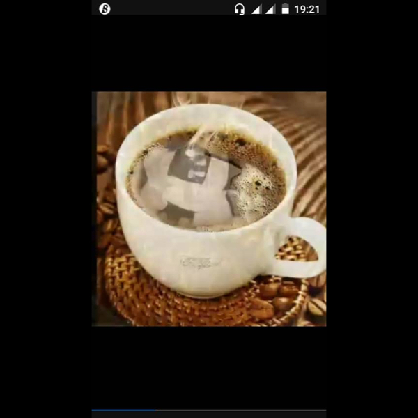 modoufallcafe -
